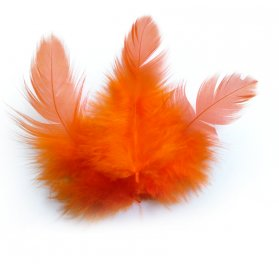 Sachet 3g plumes de coq 'PW International' Orange 100 mm
