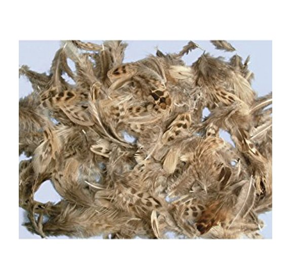 Lot de plumes 'Rayher' 10g