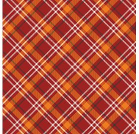 Papier double 30x30 ' Echo Park Paper - My Favorite Fall' Fall Plaid